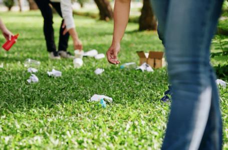 Cand ai nevoie de un consultant de mediu si ce trebuie sa stii?